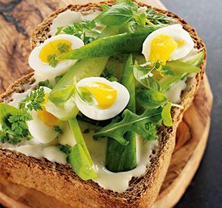 Torrada fresca de pão integral com ovo